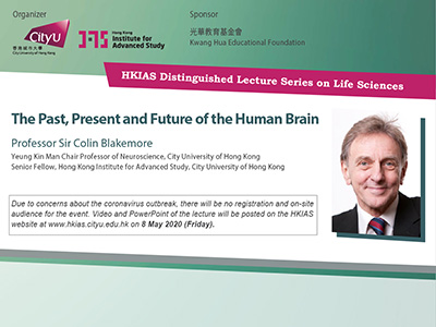 The Past, Present and Future of the Human Brain