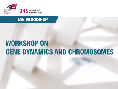 Workshop on Gene Dynamics and Chromosomes