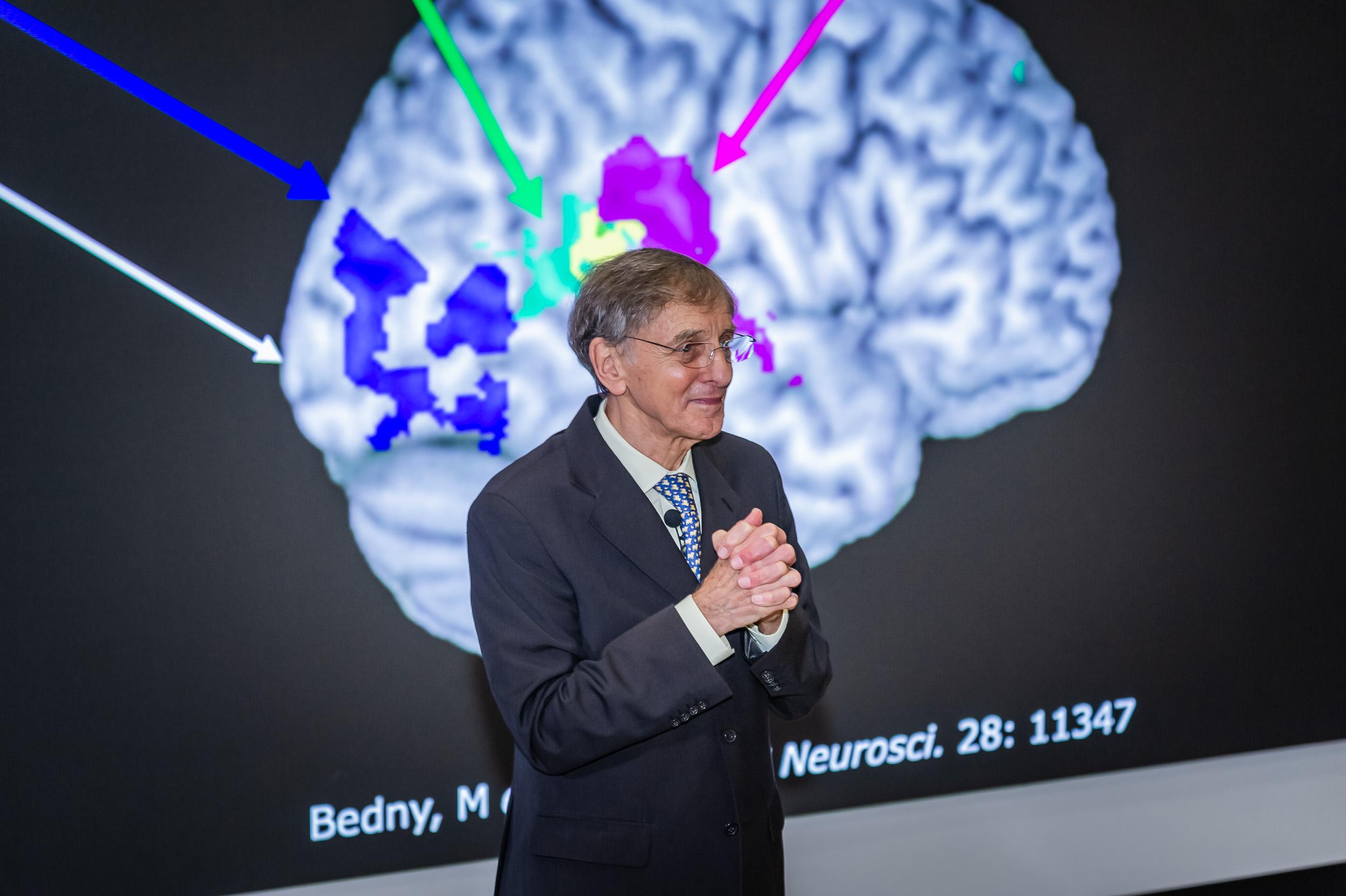 人類大腦的過去、現在與未來