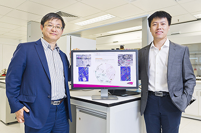 New discover helps develop materials with higher strength and ductility