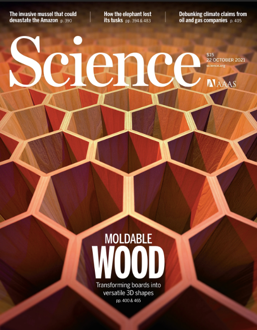 """""""In situ design of advanced titanium alloy with concentration modulations by additive manufacturing"""" by HKIAS Senior Fellows Professor Chain-Tsuan Liu and Professor Way Kuo featured in Science"""